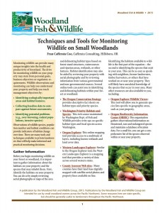 Image of Article on Techniques and Tools for Monitoring Wildlife On Small Woodslands