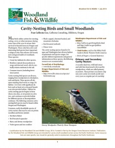 Woodland Fish and Wildlife Article Image Cavity-Nesting Birds and Small Woodlands